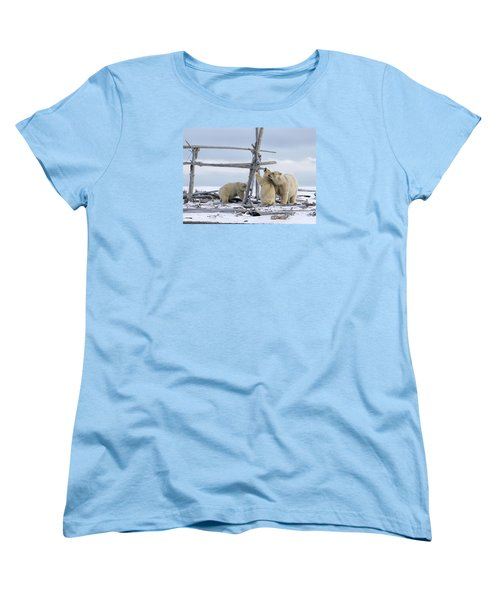 Playtime In The Arctic Women's T-Shirt (Standard Cut)