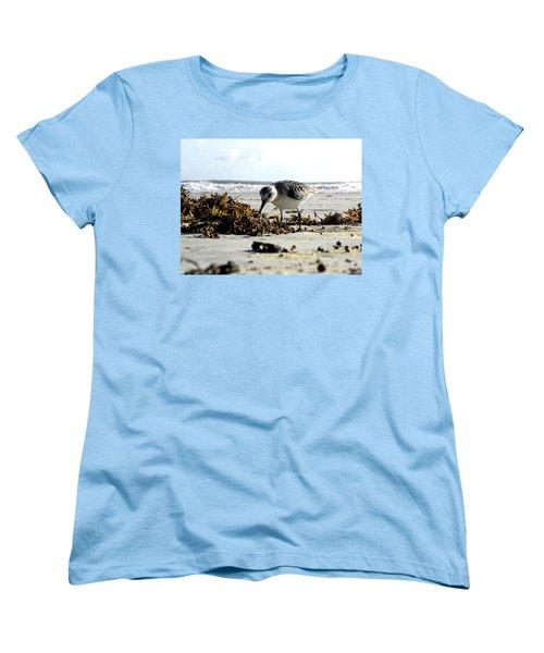 Plover On Daytona Beach Women's T-Shirt (Standard Cut) by Chris Mercer
