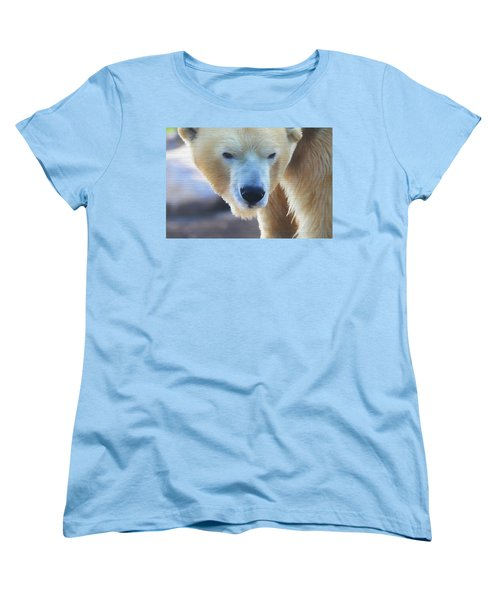 Polar Bear Wooden Texture Women's T-Shirt (Standard Cut) by Dan Sproul