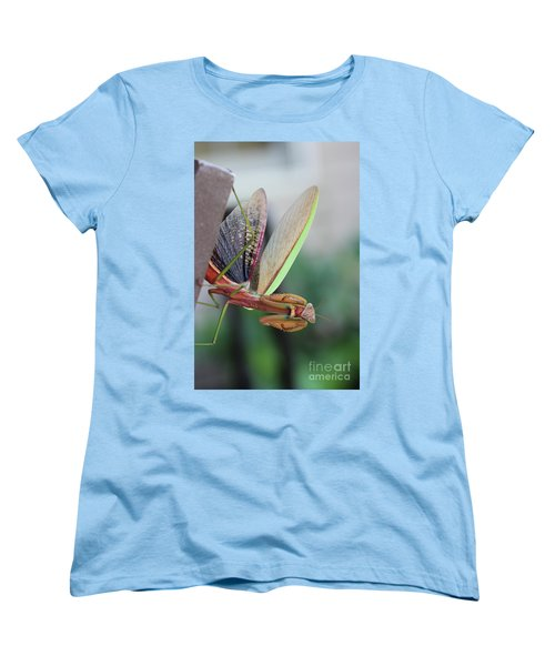Women's T-Shirt (Standard Cut) featuring the photograph Praying Mantis by Stacey Zimmerman