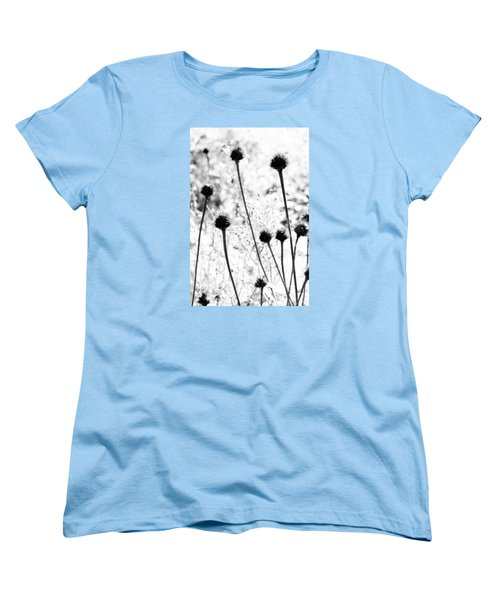 Prickly Buds Women's T-Shirt (Standard Cut) by Deborah  Crew-Johnson