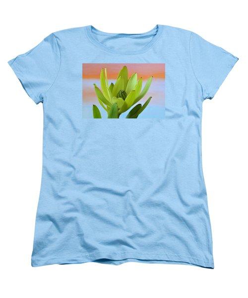 Protea Gold Strike. Women's T-Shirt (Standard Cut) by Terence Davis