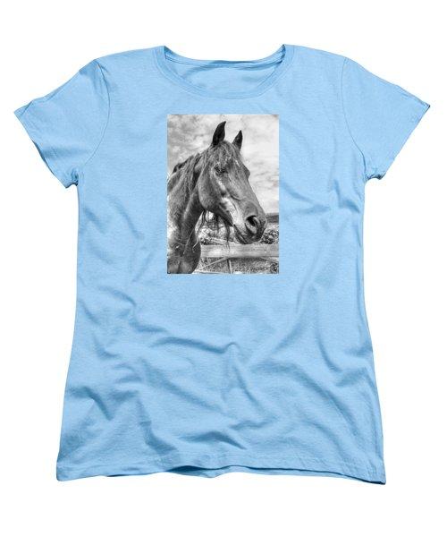 Women's T-Shirt (Standard Cut) featuring the photograph Quarter Horse Portrait by Jim Sauchyn