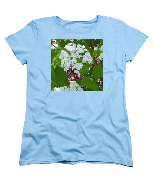 Queen Anne's Lace Women's T-Shirt (Standard Cut) by Kay Gilley