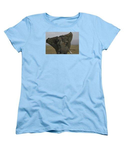 Women's T-Shirt (Standard Cut) featuring the photograph Raging Bull by Gary Hall