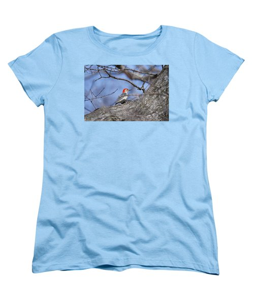 Women's T-Shirt (Standard Cut) featuring the photograph Red-bellied Woodpecker 1134 by Michael Peychich