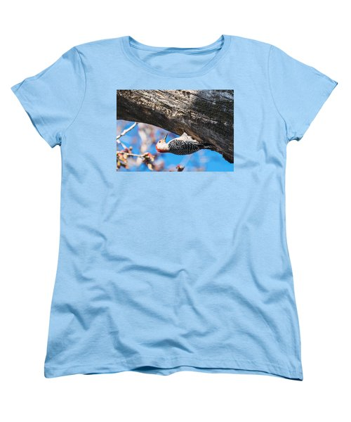 Women's T-Shirt (Standard Cut) featuring the photograph Red-bellied  Woodpecker House Building by Edward Peterson
