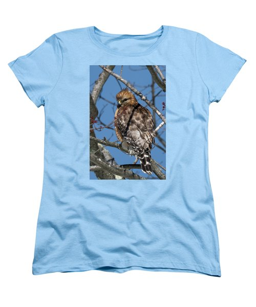 Women's T-Shirt (Standard Cut) featuring the photograph Red Shouldered Hawk 2017 by Bill Wakeley