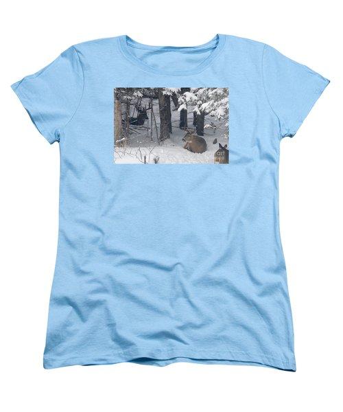 Resting Women's T-Shirt (Standard Cut) by Sandra Updyke