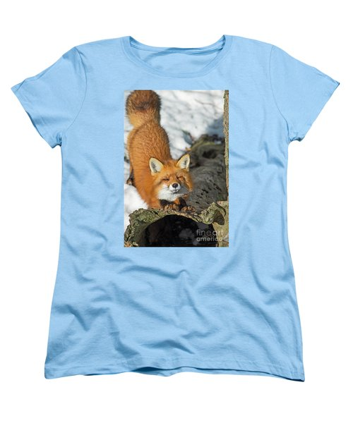 Women's T-Shirt (Standard Cut) featuring the photograph Reynard The Fox by Nina Stavlund