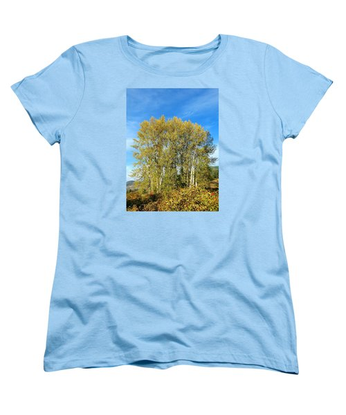 Rosehips And Cottonwoods Women's T-Shirt (Standard Cut) by Will Borden