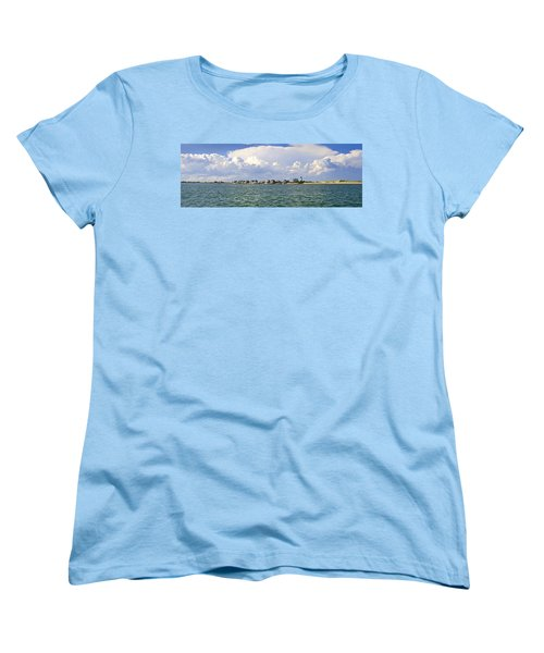 Sandy Neck Cottage Colony Women's T-Shirt (Standard Cut) by Charles Harden