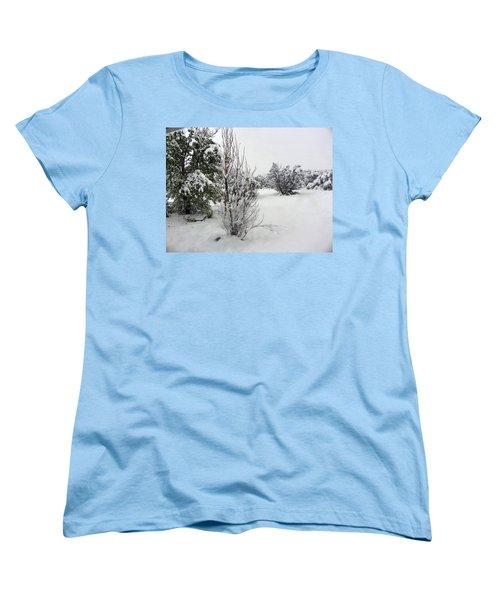 Santa Fe Snowstorm 2017 Women's T-Shirt (Standard Cut) by Joseph Frank Baraba