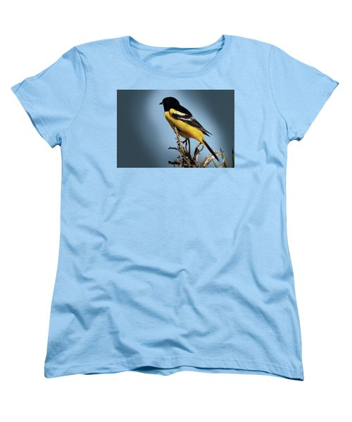 Scott's Oriole In Desert Women's T-Shirt (Standard Cut) by Penny Lisowski