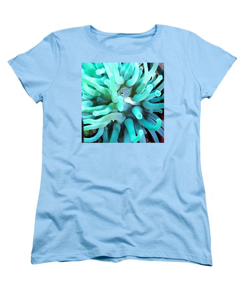 Sea Anemone And Squat Shrimp Women's T-Shirt (Standard Cut) by Amy McDaniel