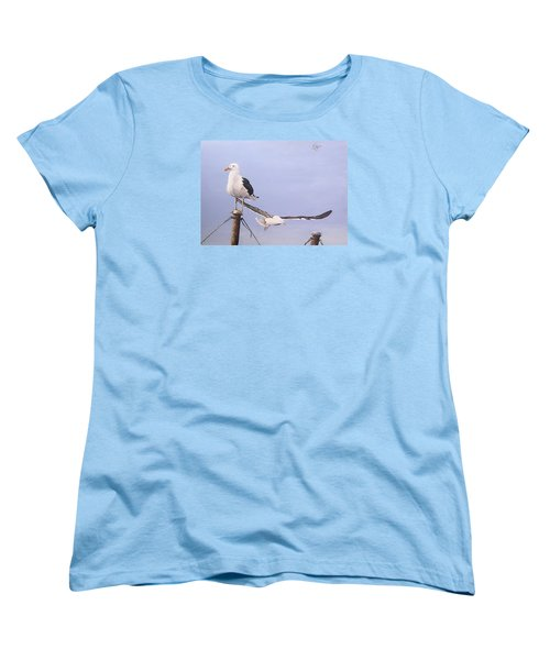 Seagulls Women's T-Shirt (Standard Cut)