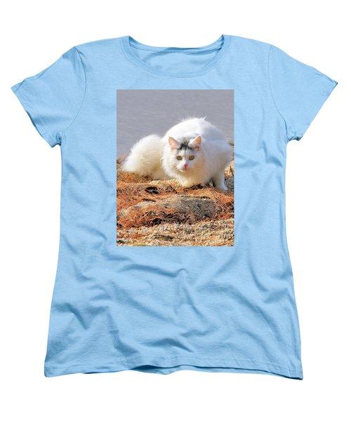 Shore Kitty Women's T-Shirt (Standard Cut) by Debbie Stahre