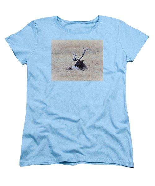 Sleeping Giant Women's T-Shirt (Standard Cut) by Steve McKinzie