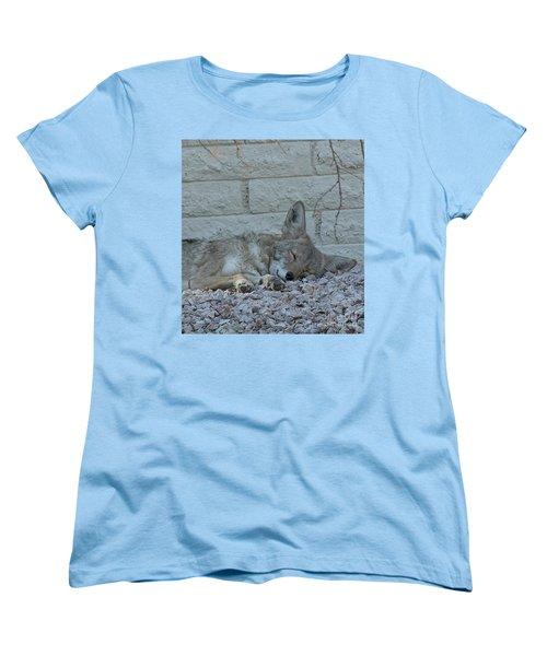 Sleepy Li'l Coyote Women's T-Shirt (Standard Cut) by Anne Rodkin