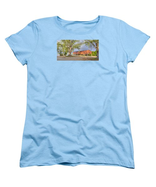 Smallwood Women's T-Shirt (Standard Cut) by Sean Allen
