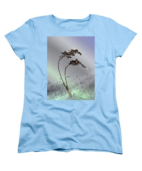 Snow Covered Weeds Women's T-Shirt (Standard Cut) by Judy Johnson