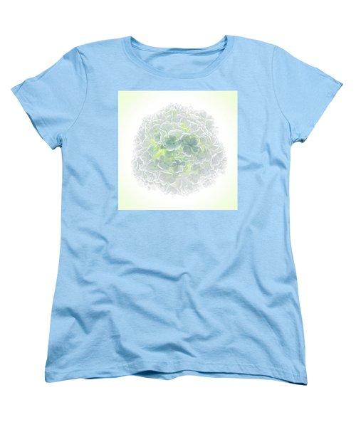 Snowball Women's T-Shirt (Standard Cut) by Robert FERD Frank