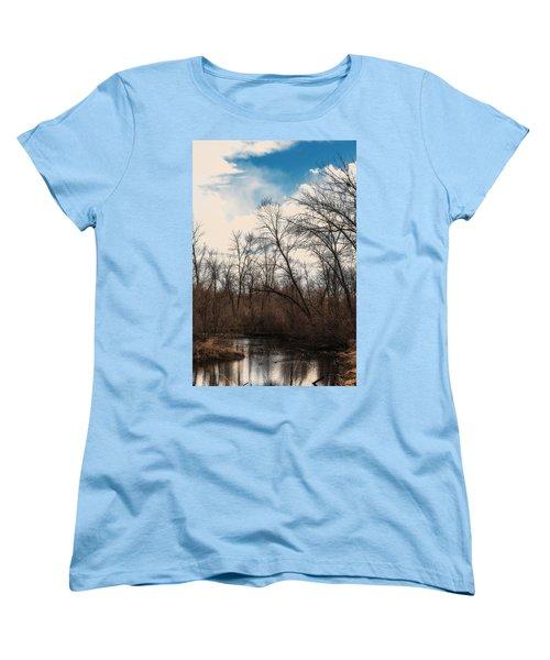 Spring Day Women's T-Shirt (Standard Cut) by Edward Peterson