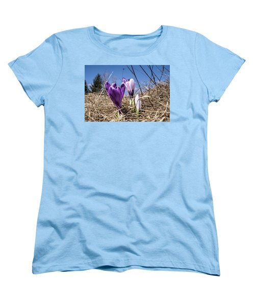 Spring On Bule Women's T-Shirt (Standard Cut) by Nick Mares