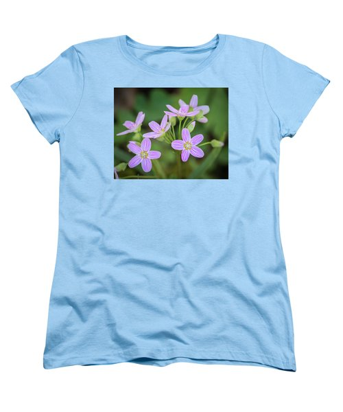 Spring Vibe Women's T-Shirt (Standard Cut) by Bill Pevlor