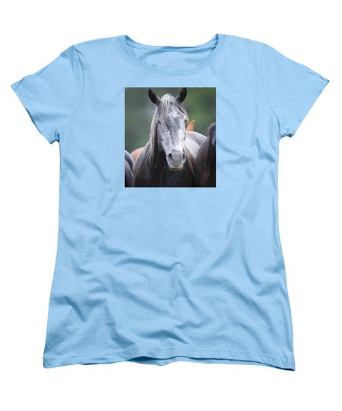 Steel Grey Women's T-Shirt (Standard Cut) by Diane Bohna