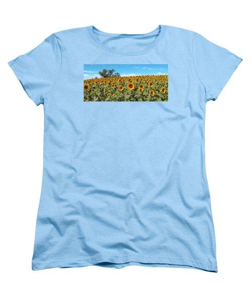 Sunflower Field One Women's T-Shirt (Standard Cut) by Barbara McDevitt