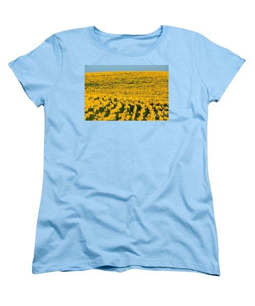 Sunflowers Galore Women's T-Shirt (Standard Cut) by Catherine Sherman