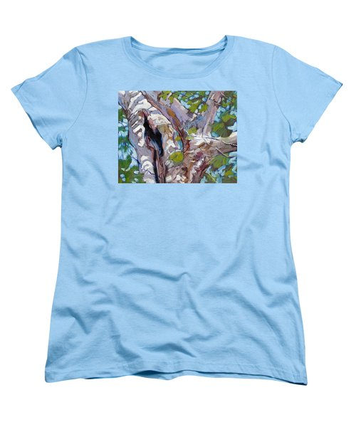 Sunlight On Sycamore Women's T-Shirt (Standard Cut) by John Lautermilch