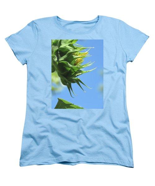 Sunshine In The Garden 15 Women's T-Shirt (Standard Cut) by Brooks Garten Hauschild