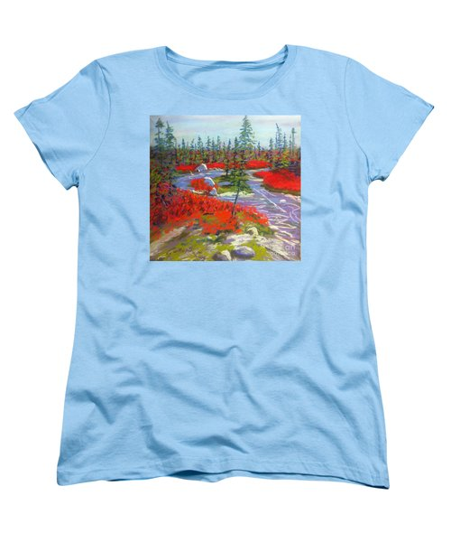 Susie Lake Barrens Women's T-Shirt (Standard Cut) by Rae  Smith