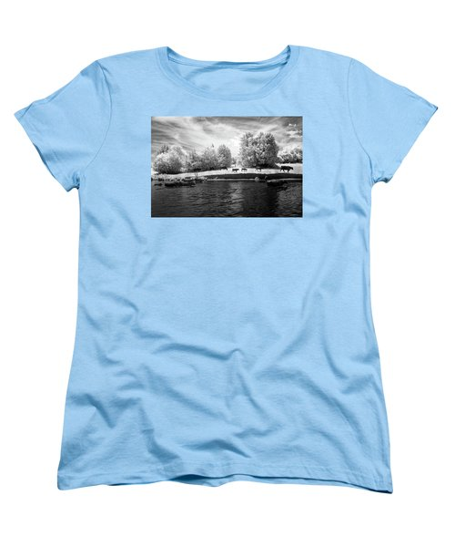 Swimming With Cows Women's T-Shirt (Standard Cut) by Paul Seymour