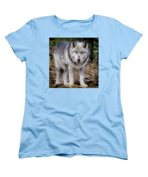 Women's T-Shirt (Standard Cut) featuring the photograph The Great Gray Wolf by Teri Virbickis
