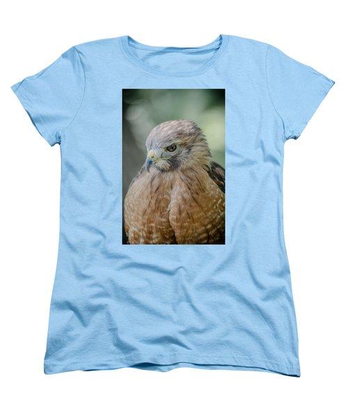The Hawk Women's T-Shirt (Standard Cut) by David Collins