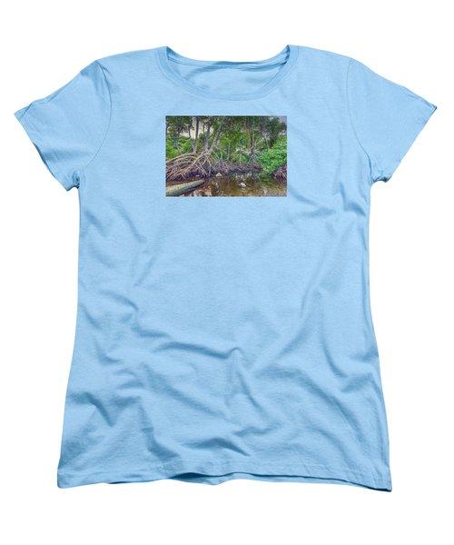 The Swamp Women's T-Shirt (Standard Cut) by Nadia Sanowar
