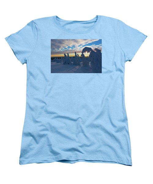 Touched From The Winter Sun Women's T-Shirt (Standard Cut) by Andreas Levi