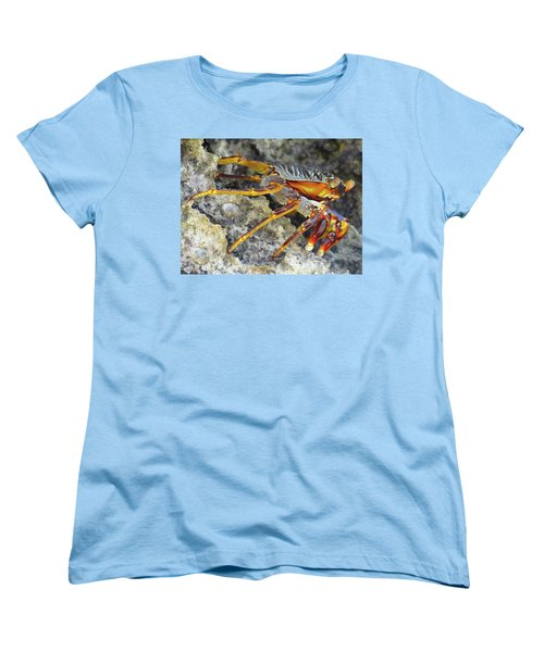 Turtle Bay Resort Watamu Kenya Rock Crab Women's T-Shirt (Standard Cut) by Exploramum Exploramum