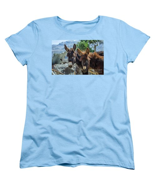 Two Donkeys Women's T-Shirt (Standard Cut) by Patricia Hofmeester