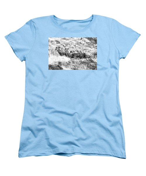 We Have A Visitor Women's T-Shirt (Standard Cut) by Steve Warnstaff
