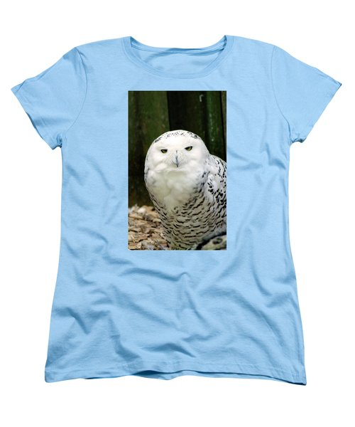 White Owl Women's T-Shirt (Standard Cut) by Rainer Kersten