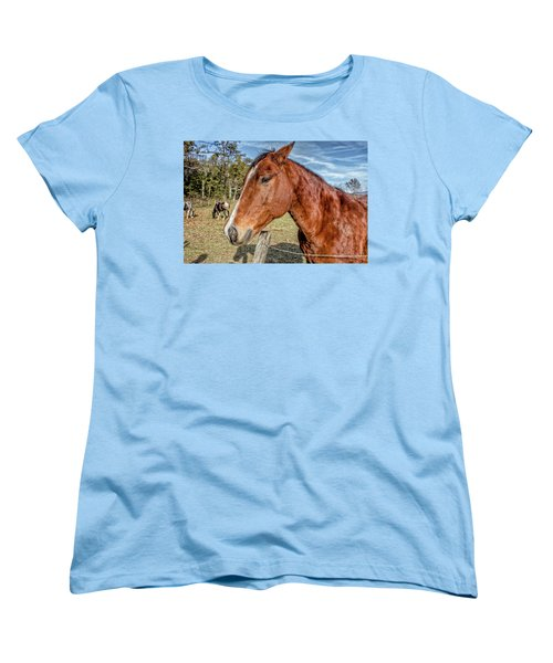 Women's T-Shirt (Standard Cut) featuring the photograph Wild Horse In Smoky Mountain National Park by Peter Ciro