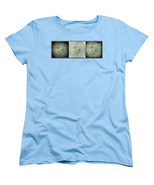 Wildlife In A Storm Women's T-Shirt (Standard Cut) by Denise Fulmer