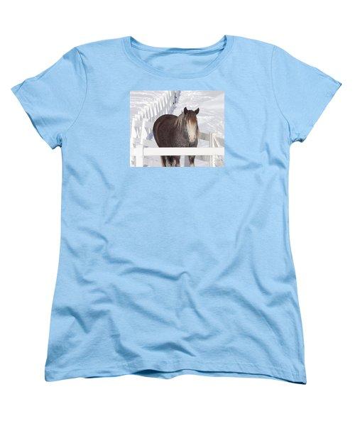 Winter Horse Women's T-Shirt (Standard Cut) by Debbie Stahre