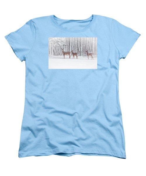 Winter Visits Women's T-Shirt (Standard Cut)