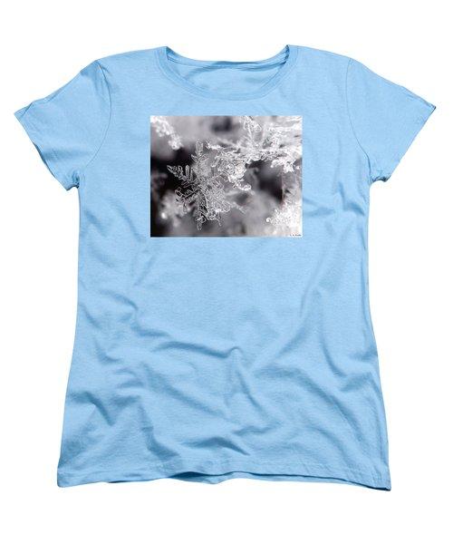 Winter's Beauty Women's T-Shirt (Standard Cut) by Lauren Radke