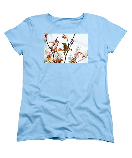Yellow Warbler Women's T-Shirt (Standard Cut) by Debbie Oppermann